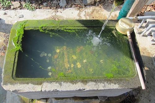 防災井戸の清掃